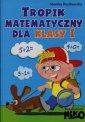 Tropik matematyczny dla klasy 1. - Monika Kozikowska